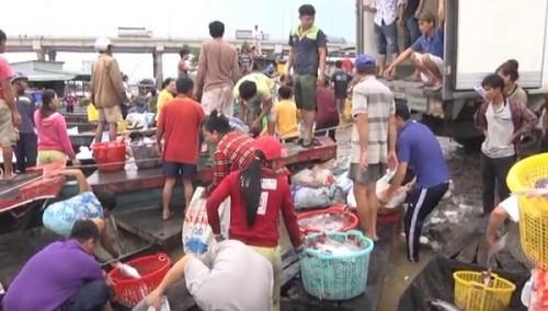Đồng Nai: Người dân tiếp tục đối mặt với việc cá bè chết hàng loạt trên sông La Ngà