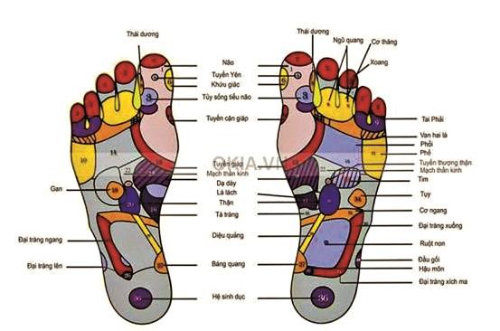 """""""Ngâm chân"""" – liệu pháp đơn giản để tăng cường sức khỏe"""