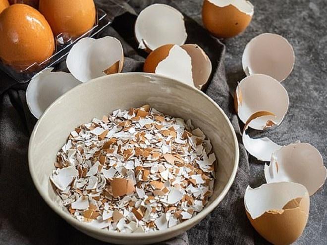 Vỏ trứng tưởng chỉ có vứt đi ai ngờ lại có công dụng độc đáo