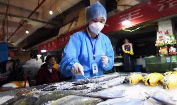 Trung Quốc phát hiện virus trên bao bì mực nhập khẩu