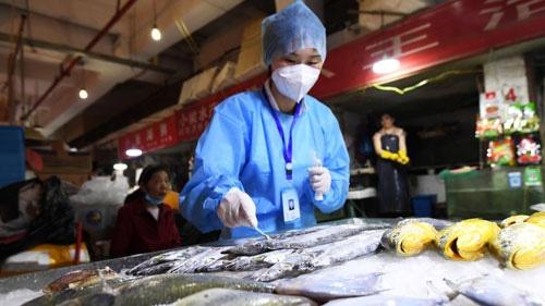 Trung Quốc phát hiện nCoV trên thịt đông lạnh