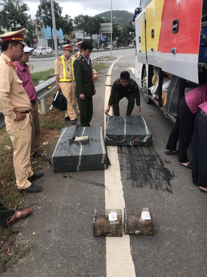 Đà Nẵng: Xe khách chở 70 cá thể dúi không rõ nguồn gốc