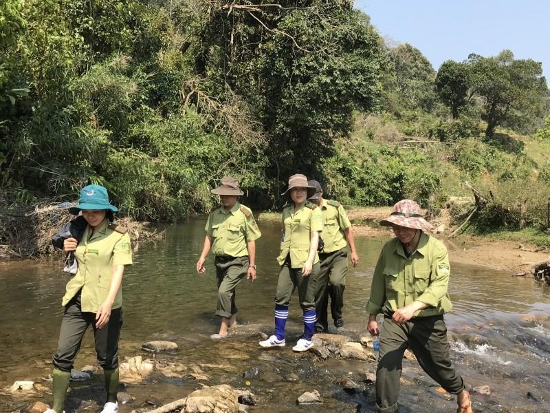 Kon Tum: Công ty TNHH MTV Lâm Nghiệp Ia H'Drai nỗ lực hết mình trong công tác bảo vệ rừng
