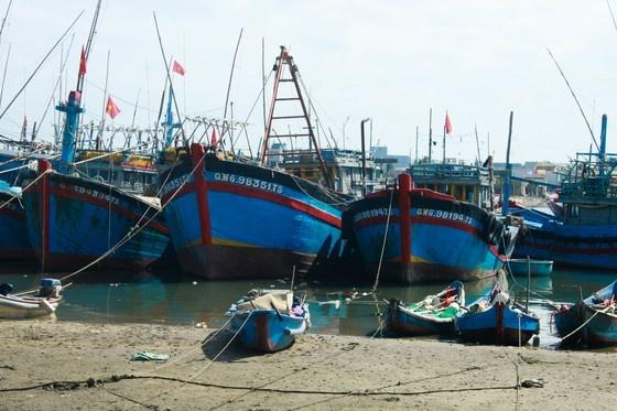 Quảng Ngãi: Hàng trăm tàu cá không thể ra khơi vì luồng lạch bị bồi lấp