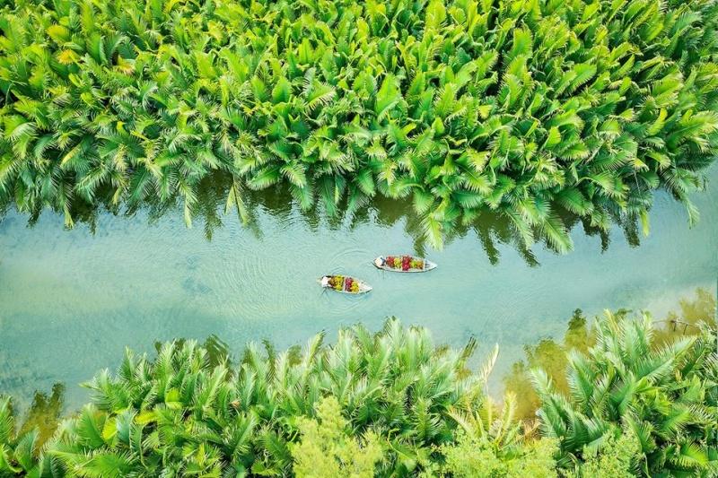 Quảng Ngãi: Bàn giao gần 50 hecta rừng ngập mặn cho cộng đồng quản lý
