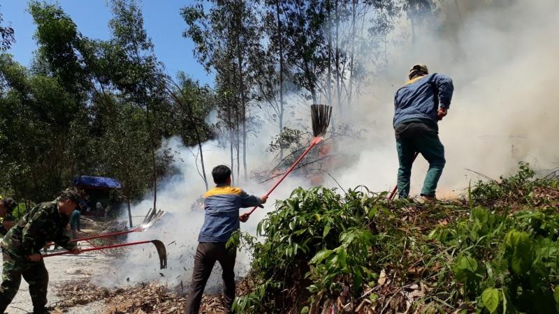 Quảng Ngãi : Lực lượng Kiểm lâm diễn tập xử lý các tình huống cháy rừng