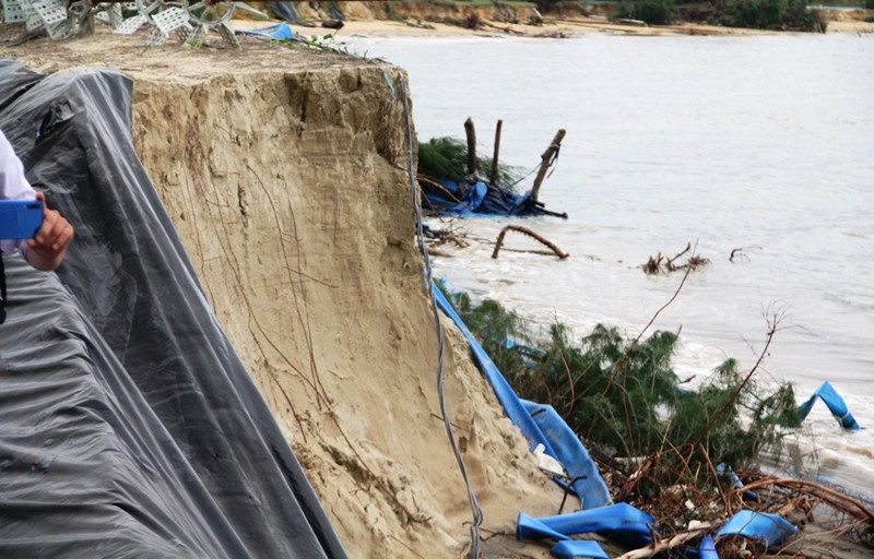 Quảng Nam: 40 tỷ đồng chống xói lở khẩn cấp và bảo vệ bờ biển Tam Hải