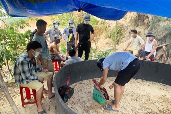 Đà Nẵng: Tổ chức đá gà khi thành phố đang giãn cách xã hội