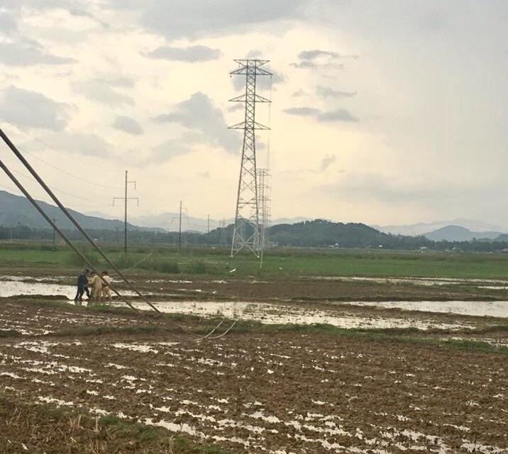 Tìm hướng giải quyết vướng mắc dự án đường dây 220 kV Quảng Ngãi - Quy Nhơn