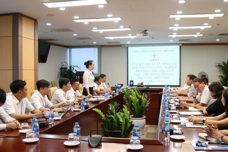 Cục Kỹ thuật an toàn và Môi trường công nghiệp (Bộ Công Thương) làm việc với EVNNPC