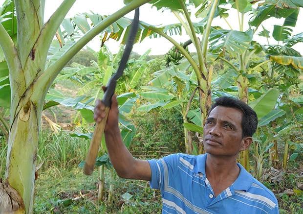 Kon Tum: Ý thức thoát nghèo của nhiều hộ dân tại Đăk Tờ Re