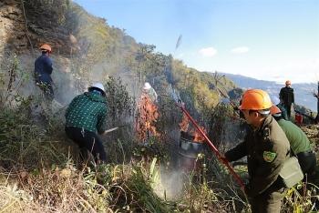 Chiến dịch cải tạo môi trường thiên nhiên, bảo vệ rừng già, phát triển du lịch bền vững
