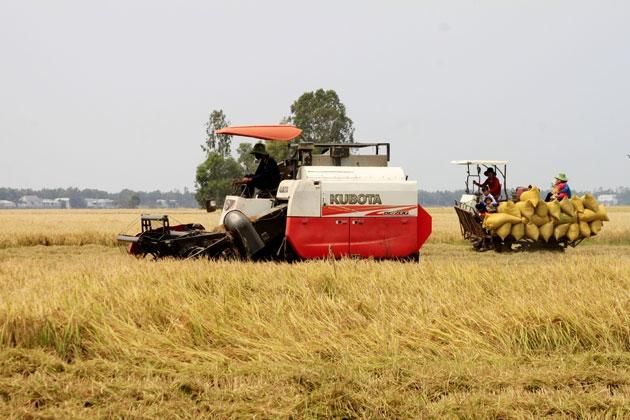 Di chuyển của các lực lượng sản xuất nông nghiệp phía nam vẫn gặp khó