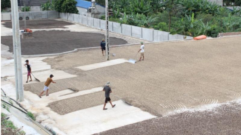 Sơn La tăng cường các giải pháp để bảo vệ môi trường