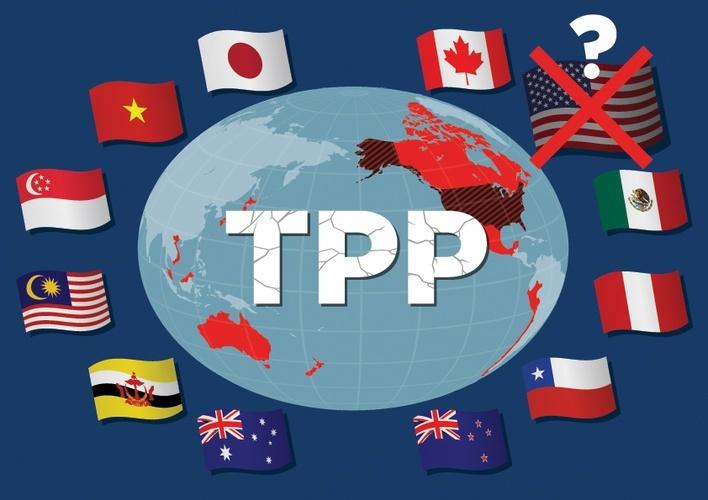 TPP-11 có gì?
