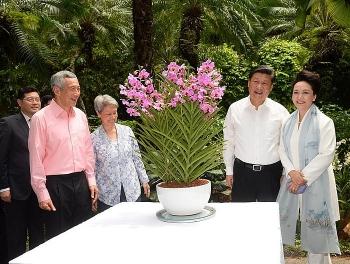 singapore va ngoai giao phong lan