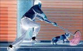 Hải Phòng: Bị người dân vây đánh khi trộm chó, một đối tượng tử vong