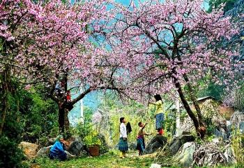 tet cam rung net dep van hoa cua dong bao hmong