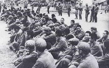 cao bang dau nam 1979 ky 17