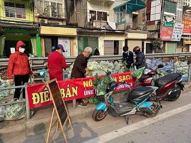 nguoi ha noi giai cuu nong san cho nong dan hai duong 15 tan rau ban trong vai tieng