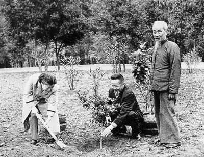 Triết lý sống hài hòa với thiên nhiên của Hồ Chí Minh - Một giá trị vĩnh hằng (phần I)