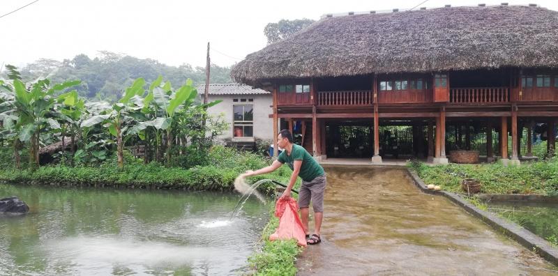 Cựu chiến binh Nguyễn Văn Lý làm giàu từ mô hình VAC