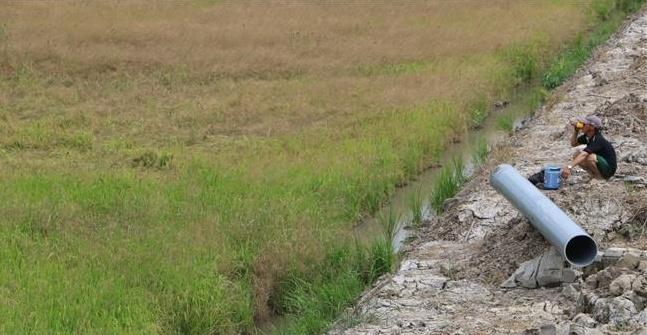 Nước mặn xâm nhập sớm ở Hậu Giang - Bài 1: Diễn biến phức tạp