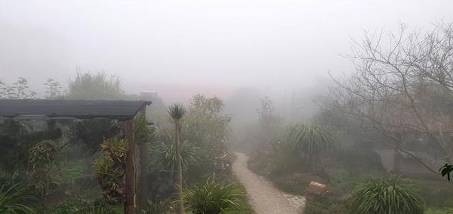 Vùng núi Lào Cai rét đậm, người dân đề phòng băng giá gây hại