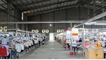 An Giang phấn đấu giải quyết việc làm cho 30.000 lao động trong năm 2020