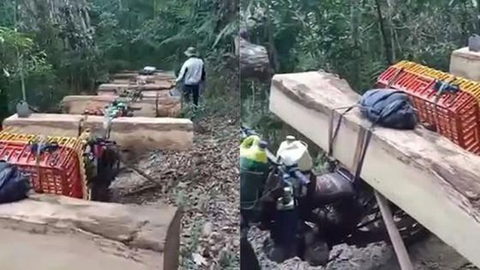 Bắt quả tang vụ khai thác rừng trái phép