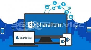 canh bao lo hong thu thap thong tin tren ung dung microsoft sharepoint
