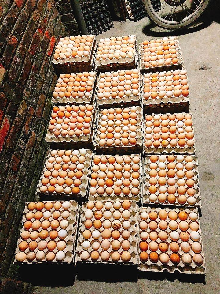 Khuyến cáo người dân không nghe theo tin đồn ăn trứng gà phòng COVID-19