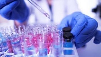 Không ghi nhận trường hợp mắc COVID-19 mới, các bệnh nhân nặng có nhiều tiến triển