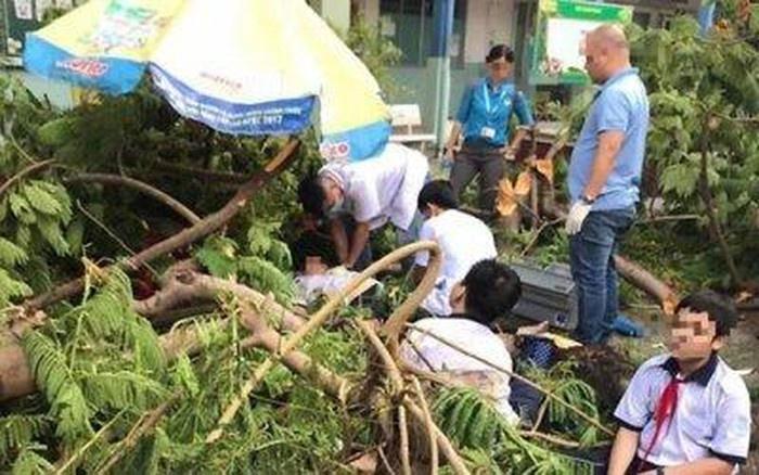 Bộ trưởng Bộ Giáo dục và Đào tạo thăm hỏi học sinh trong vụ tai nạn đổ cây tại Thành phố Hồ Chí Minh