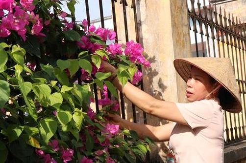 """Hiệu quả từ mô hình """"Khu dân cư không rác thải"""" của phụ nữ Bắc Ninh"""