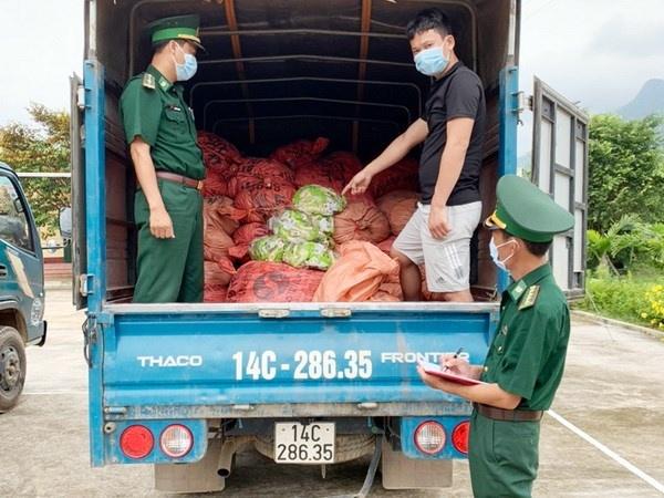 Bắt giữ vụ 1,5 tấn chân gà sơ chế xuất lậu sang biên giới