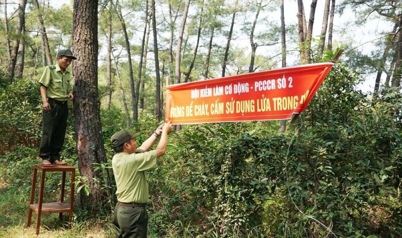 Thái Nguyên tăng cường phòng, chống cháy rừng