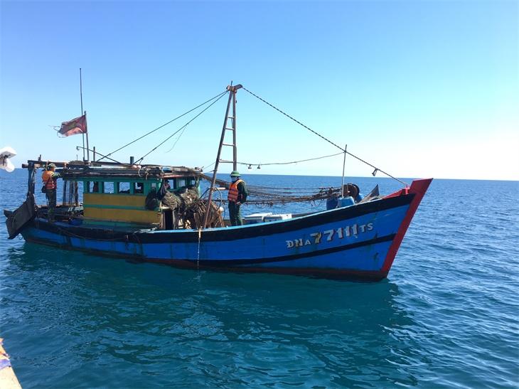 Bắt giữ một tàu khai thác giã cào trái phép gần bờ biển Lăng Cô