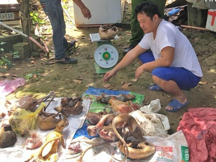 Phạt 330 triệu đồng đối tượng tàng trữ, mua bán động vật rừng trái phép