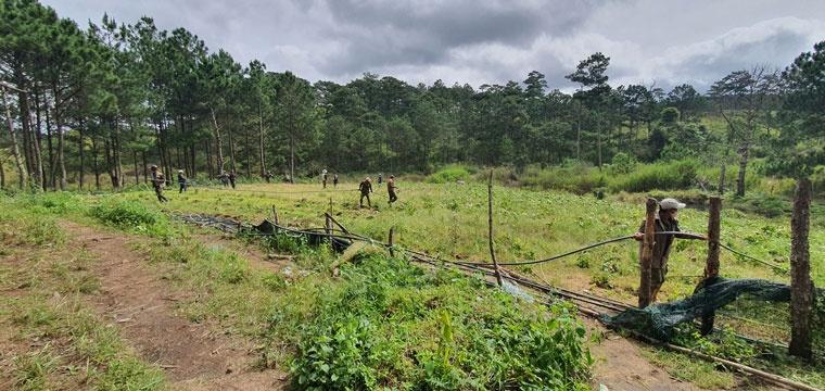 Cưỡng chế, thu hồi 3.600 m2 đất rừng bị lấn chiếm tại Đà Lạt (Lâm Đồng)