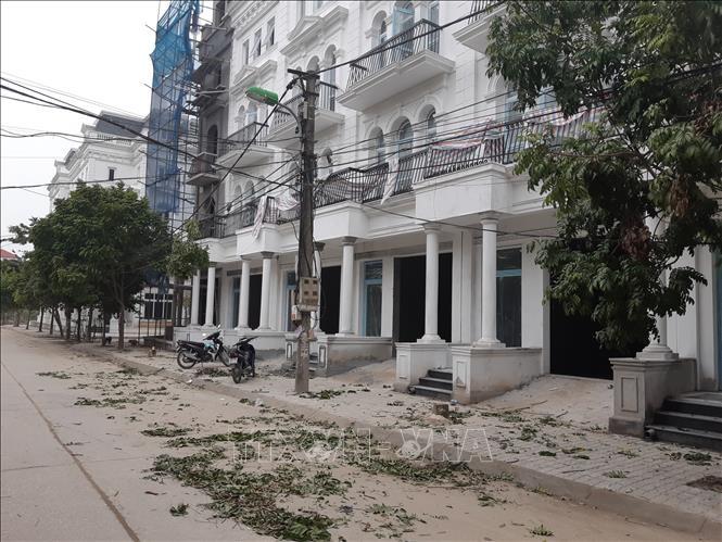 Người dân đề nghị cần làm rõ đối tượng chặt trộm cây xanh ở phường Đại Mỗ, Hà Nội