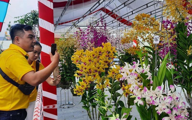 Rực rỡ sắc màu Hội thi Hoa phong lan toàn quốc năm 2020
