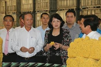 pho chu tich nuoc dang thi ngoc thinh nganh cao su nam bat tien bo cach mang cong nghiep lan thu 4