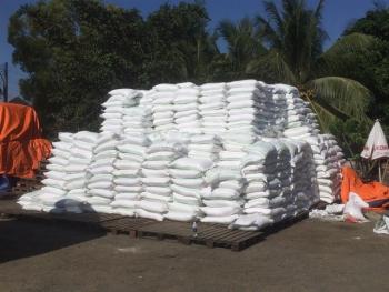 Triệt phá đường dây buôn lậu đường cát trắng từ Campuchia về Việt Nam