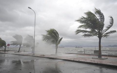 Chủ động triển khai các biện pháp ứng phó với gió mạnh trên biển