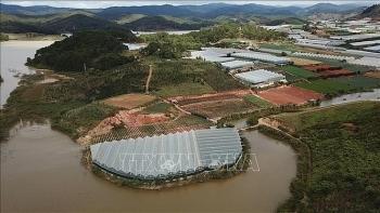 Nỗi lo hồ cấp nước sinh hoạt của Đà Lạt suy giảm chất lượng
