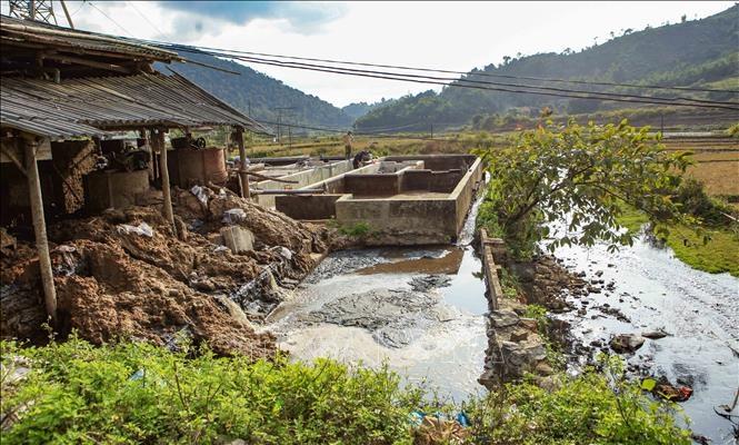 Tái diễn tình trạng ô nhiễm môi trường do chế biến cà phê và dong riềng