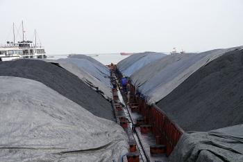 Bộ Tư lệnh Vùng Cảnh sát biển 1 tạm giữ 3.000 tấn than không rõ nguồn gốc