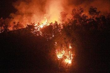 Điện Biên: Cháy rừng lớn trong nhiều giờ