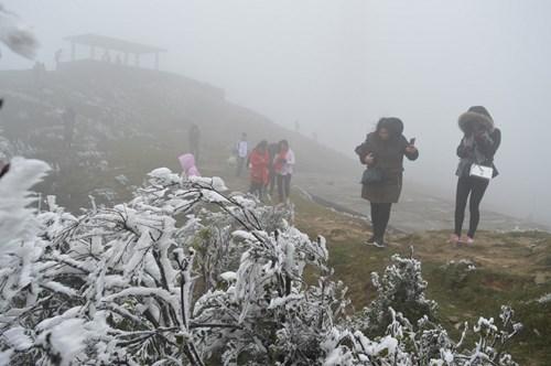 Vùng núi Bắc Bộ, Bắc Trung Bộ rét đậm, rét hại và có khả năng xảy ra băng giá, sương muối